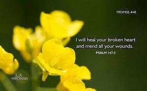 He heals the broken