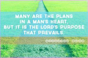 Proverbs 19