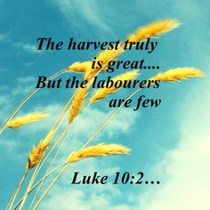 Luke 10 2