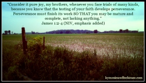 James 1 2