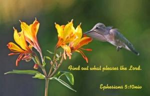 Ephesians 5 10