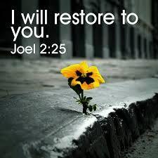 Joel 2 25